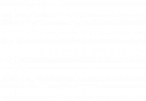 HISTOMICS